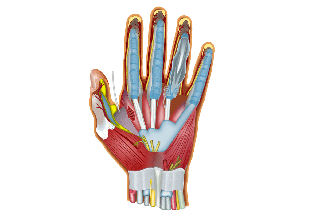 Ulnar Neuropathy and Its Treatment